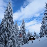 Winter Mountain Moods in Les Avants- Switzerland 20/48